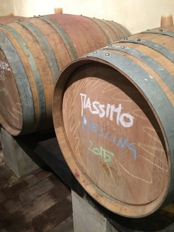 Massimo Riesling, named after Michele's son